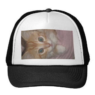 KITTY MEOW COLLECTION CAP