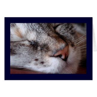 Kitty Notecard Card