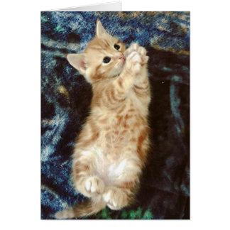 Kitty Paws Pretty Please Card