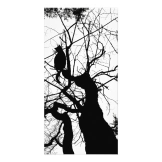 KITTY TREE SILHOUETTE B&W PERSONALIZED PHOTO CARD