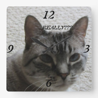 Kitty Tude Wall Clock !