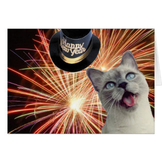 Kitty with fireworks greeting cards