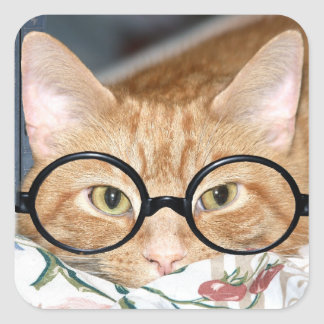 Kitty with glasses square sticker