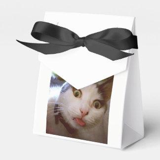 Kitty Yum Yum Box