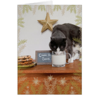 Kitty's Cookies for Santa Card