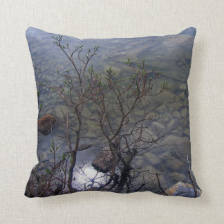 KIW Sparks: Mirror Lake 2 Pillow