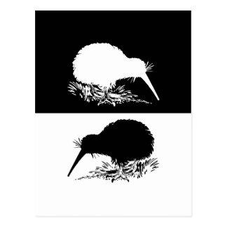kiwi bird postcard