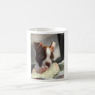 Kiwi mug II