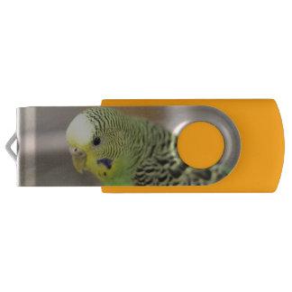 Kiwi USB Flash Drive