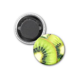 Kiwifruit Fridge Magnet