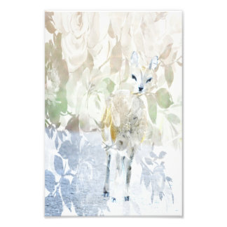 Klipspringer with roses photographic print