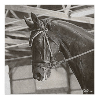KMCphoto B&W Horse at Work Poster