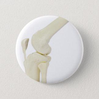 Knee joint model of human leg 6 cm round badge