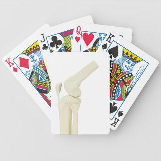 Knee joint model of human leg poker deck