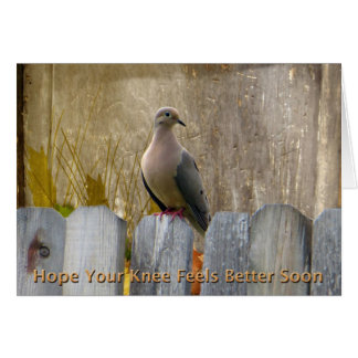 Knee Surgery Get Well Soon Love Dove Card