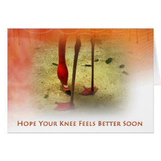 Knee Surgery Get Well Soon Pink Flamingo Greeting Card
