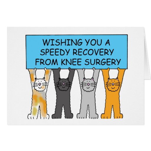 Knee surgery speedy recovery with cats. greeting card