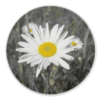 knob,yelloq , white summer blossom in grey ceramic knob