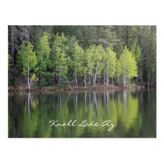 Knoll Lake Arizona Postcard