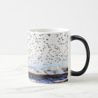 Knot on the Seashore Coffee Mugs