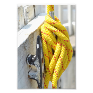 Knots Another by Kenneth Yoncich Photo Print