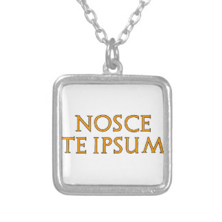Know Thyself Silver Plated Necklace