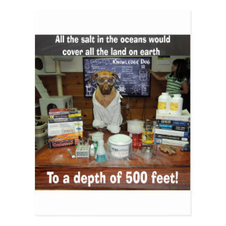 Knowledge Dog Salt in the Oceans Postcard