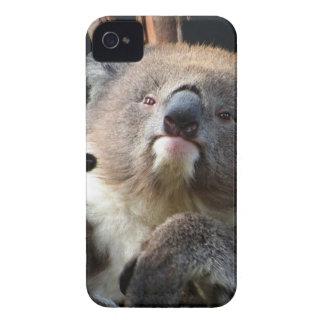 Koala 1 iPhone 4 case