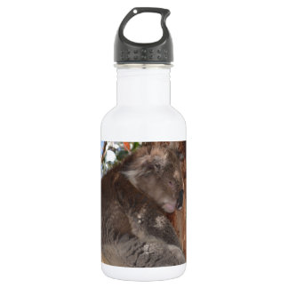 Koala 532 Ml Water Bottle