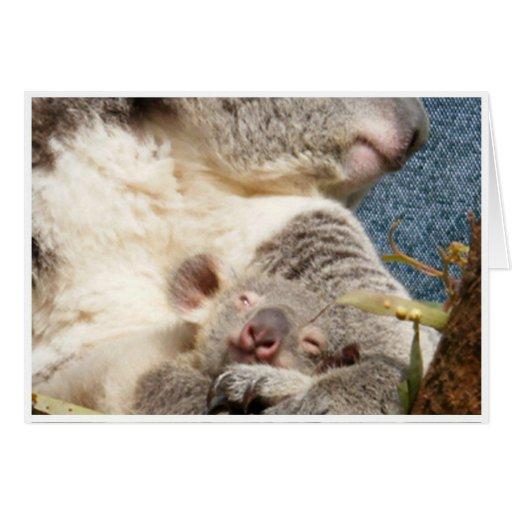 koala and baby greeting cards