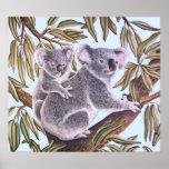 Koala and baby in Eucalyptus Tree Print
