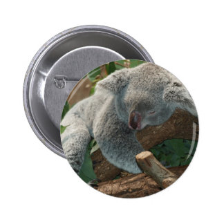 Koala Bear Australia Teddy Sleep 6 Cm Round Badge