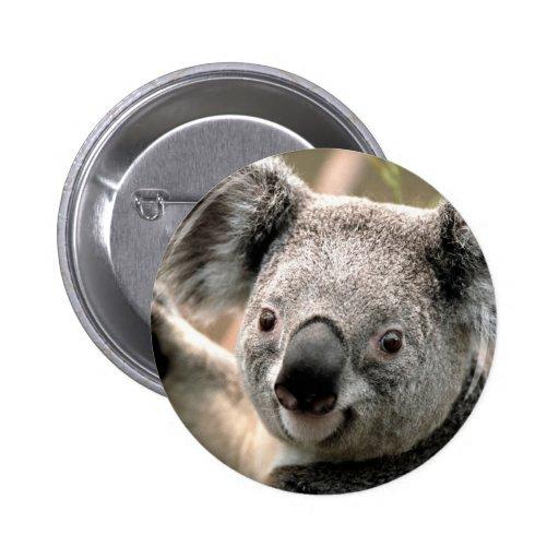 Koala Bear Buttons