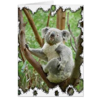 Koala Bear Card