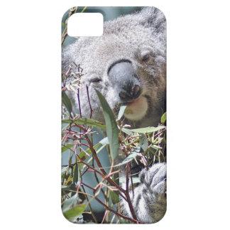 Koala bear iPhone 5 cover