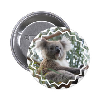 Koala Bear Facts Button