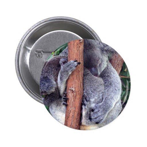 Koala Bear Family Button