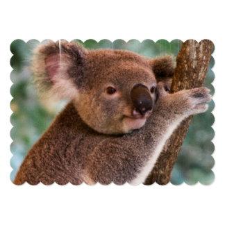 Koala Bear Custom Invitations