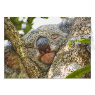 Koala Bear Notecard Note Card