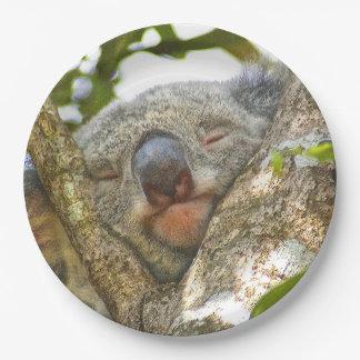 Koala Bear Paper Plate