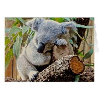 Koala Bear Sleeping Get Well Greeting Card