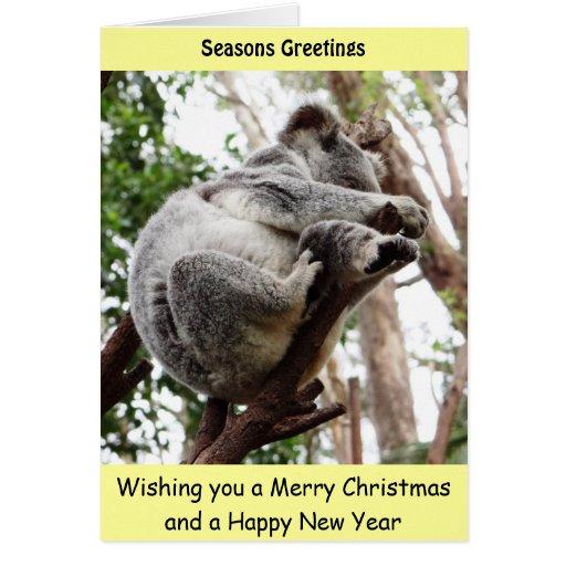 Koala Bear Xmas Card