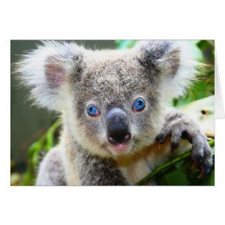 Koala Bears Greeting Cards