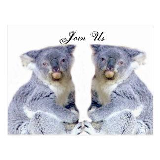 Koala Bears Love_ Postcard