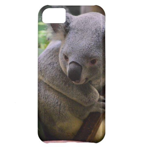 Koala Cover For iPhone 5C
