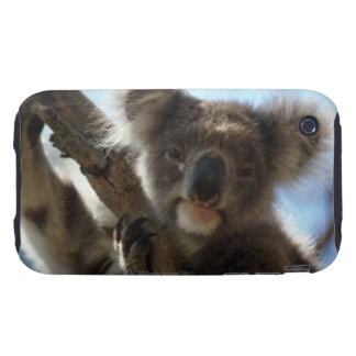 koala iPhone 3 tough case