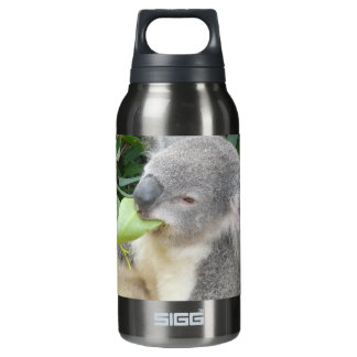 Koala Eating Gum Leaf Insulated Water Bottle