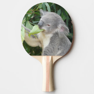 Koala Eating Gum Leaf Ping Pong Paddle
