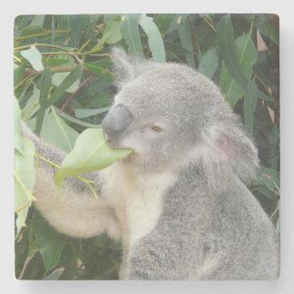 Koala Eating Gum Leaf Stone Beverage Coaster