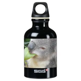 Koala Eating Gum Leaf Water Bottle